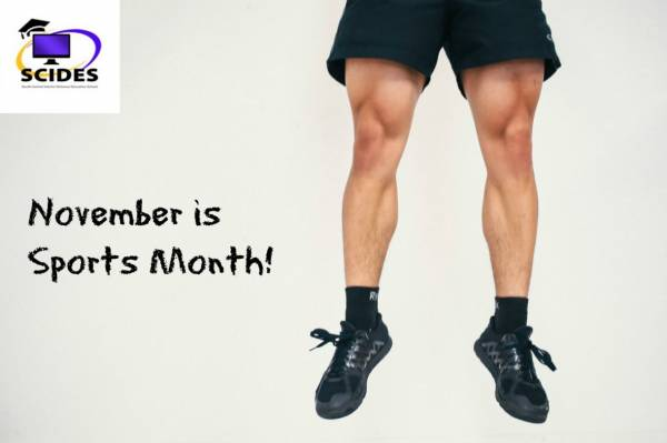 November is Sports Month at SCIDES!
