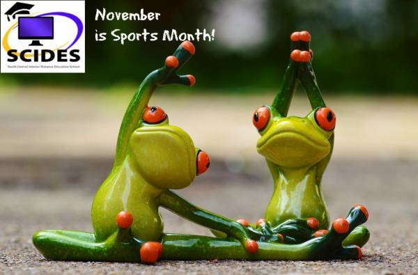 November is Sports Month at SCIDES